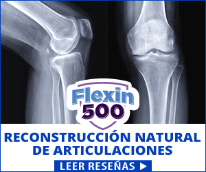 Flexin500 - articulaciones